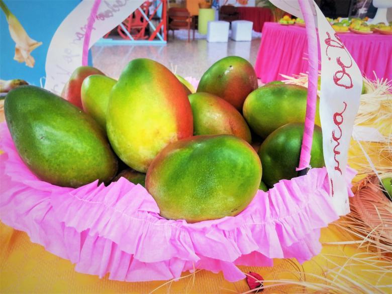 Фрукты в Доминикане: Манго – WedDesign | Свадьба в Доминикане