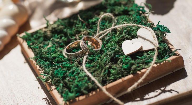 Заказать свадебную церемонию в Доминикане – WedDesign – Свадьба в Доминикане